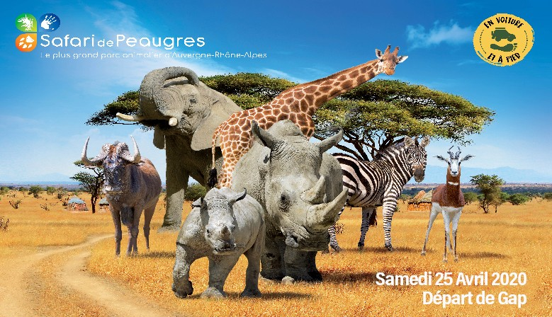 Safari de Peaugres - 25 Avril 2020